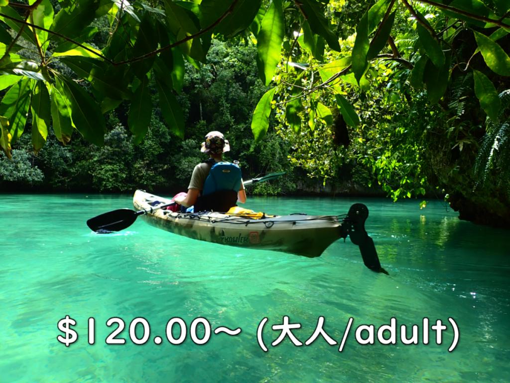 1day カヤック 松島洞窟